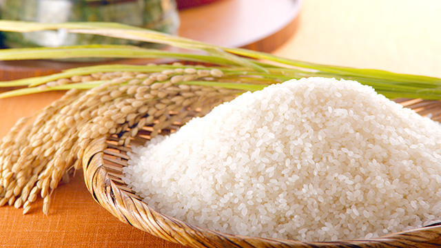 rice and grain production business our business zennoh